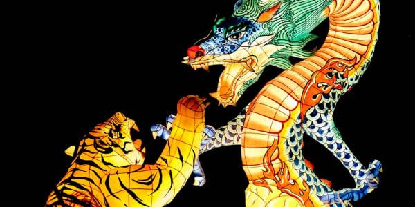 Dragon Tiger: Permainan Kasino Live yang Popular